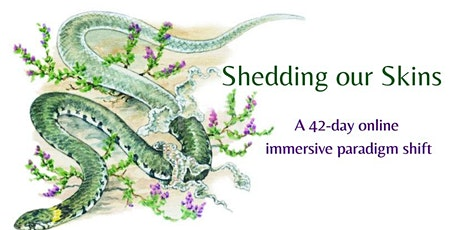 Shedding Our Skins: a 42-day online immersive paradigm shift tickets