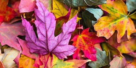 Create a Decorative Autumn Leaf Trivet - School Holidays Workshop tickets