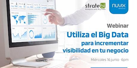 Utiliza el Big Data para incrementar la visibilidad en tu negocio entradas