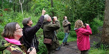 Beginner's Guide to British Trees Workshop tickets