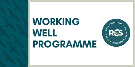 Becoming a Wellbeing Employer tickets