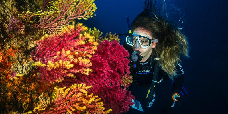 Webinar: How to become an 'underwater astronaut'