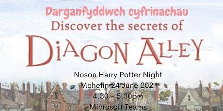 Noson Harry Potter / Harry Potter Night tickets