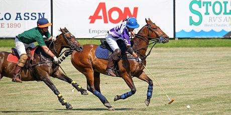 Friday Polo - Matches tickets