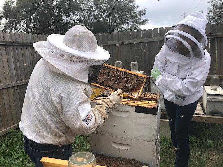 Fall 2021 Beginner Beekeeper's Short Course image