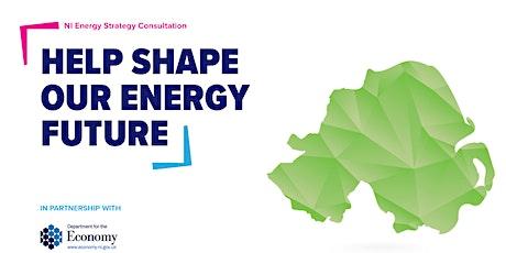 NI Energy Strategy Consultation: Member Response tickets