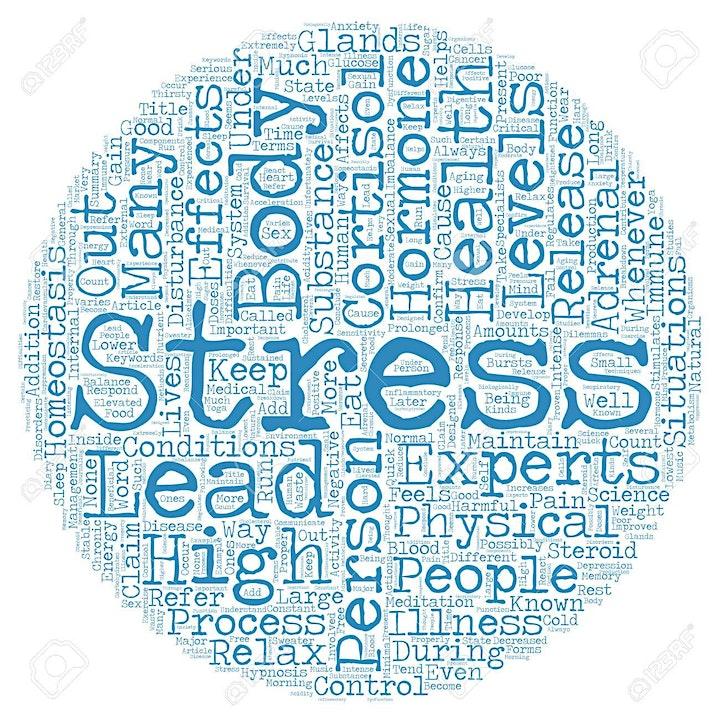 Afbeelding van Stress Managen & Energie