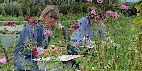 Meditatief planten tekenen in de pluktuin  in Herk de stad tickets