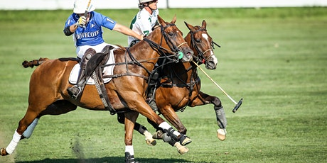 Sunday Polo - Polo Ponies Memorial 6-8g Final tickets