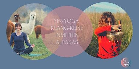 Yin Yoga  Klangreise inmitten Alpakas Zürich tickets
