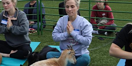 Goat Yoga Texas - SUPER SUMMER! - Sat, July 10 @ 10am tickets
