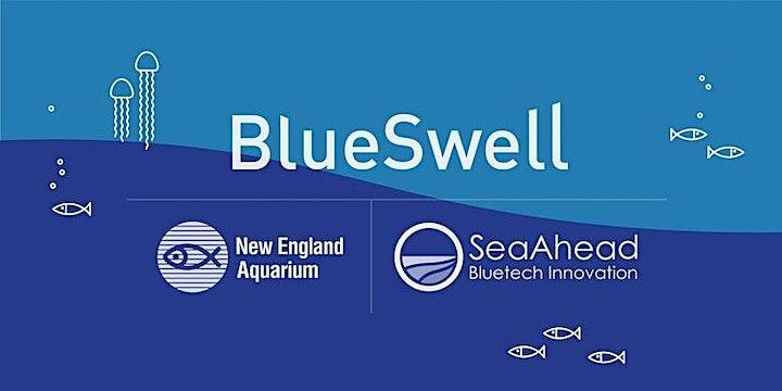 Bluetech Free Swim: Innovators Connect! (Virtual) image