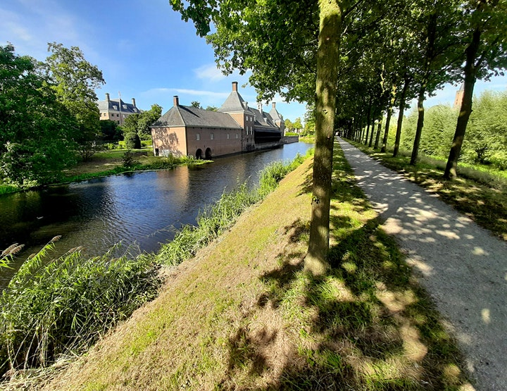Afbeelding van MMT 202`1 - Midsummer Mega Trail Utrechtse Heuvelrug