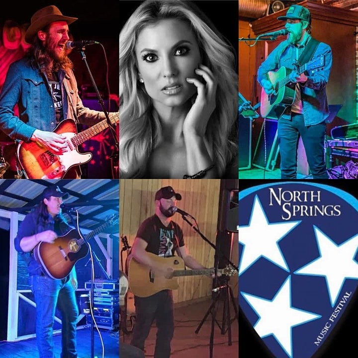 North Springs Music Festival ll image