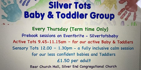 Silver Tots Baby and Toddler Group - Sensory Tots - 24th June 12.00-1.30pm tickets