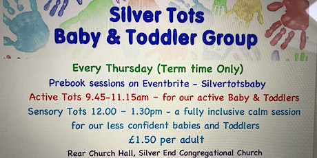 Silver Tots Baby and Toddler Group - Active Tots - 1st July  9.45-11.15am tickets