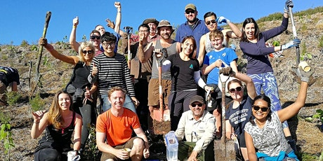 Got To Get Out Tree Planting: Lyford Reserve tickets