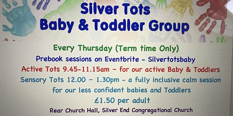 Silver Tots Baby and Toddler Group - Sensory Tots - 8th July 12.00-1.30pm tickets