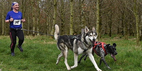 Pawsitive Fitness Canicross Race tickets
