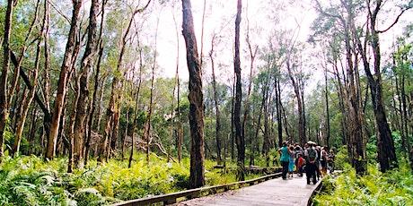 NaturallyGC Coombabah Lakelands Bushwalk tickets