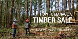 How to Manage a Timber Sale