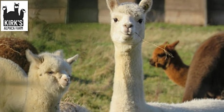 Kirk's Alpaca Farm tickets