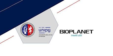 Career Virtual Events 2021 - Bioplanet - La fabbrica degli insetti biglietti