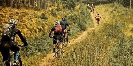 South Downs Bikes Trail Ride @ Houghton Forest tickets