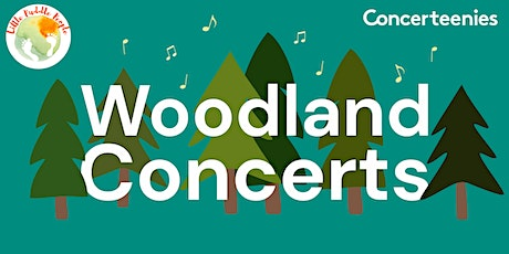 Woodland Concerts | 20th August: Sounds in the Sky tickets