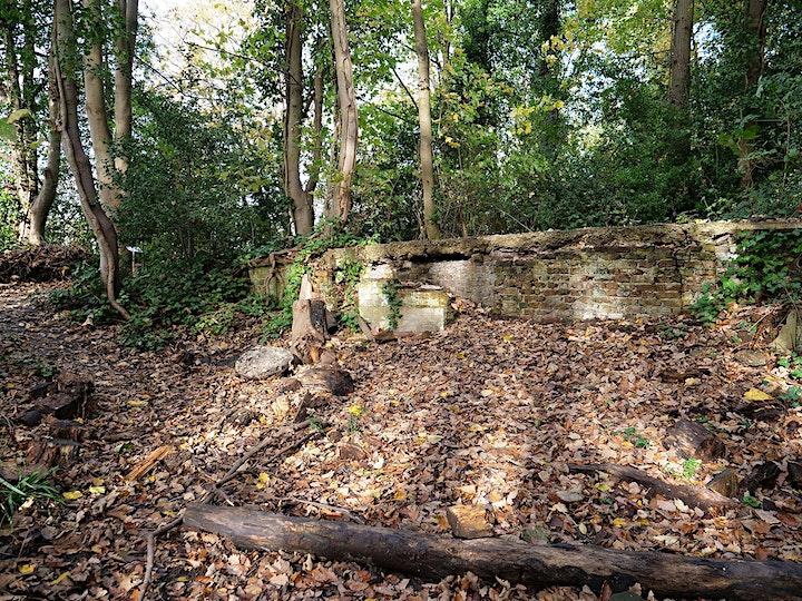 Short Walk #3 Vicar's Oak to Dulwich Upper Wood image