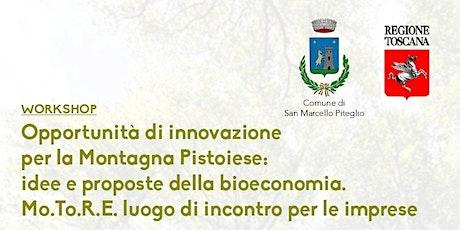 Workshop: Opportunità di innovazione per la Montagna Pistoiese biglietti