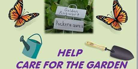 Caring for the  Pollinator Garden at Lake Accotink Park tickets