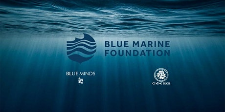 Blue Marine Foundation Exhibition Private View and Drinks Reception tickets