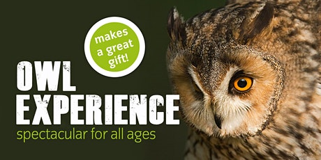 ICBP Owl Experience tickets