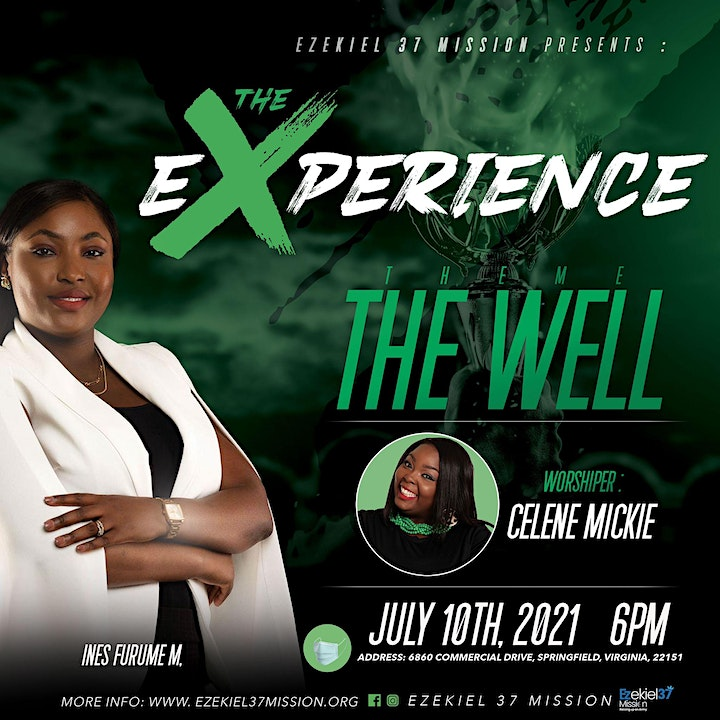 The Experience: THE WELL image