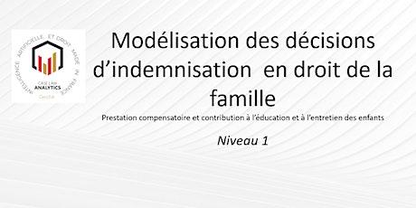 Modélisation des décisions  d'indemnisation  en droit de la famille billets