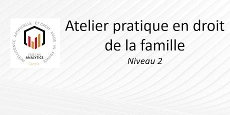 Atelier pratique en droit de la famille billets