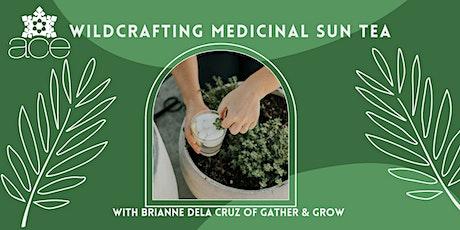 Wildcrafting Medicinal Sun Tea tickets