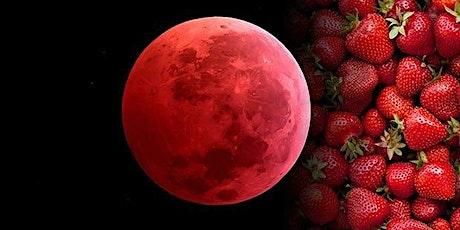 Strawberry Full Moon: 432hz Sound Meditation w/ Shane Thunder tickets