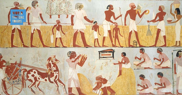 Daily Life in Ancient Egypt image