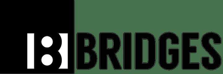 Presentation of the BRIDGES Toolkit image