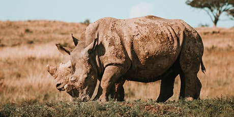 Speaking Up for Endangered Species in a Time of International Turmoil tickets
