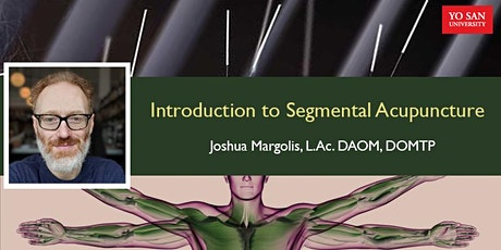 Introduction to Segmental Acupuncture tickets