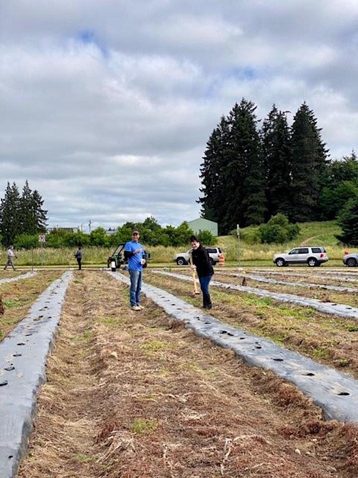 CCAR - Heritage Farm Volunteer Day image