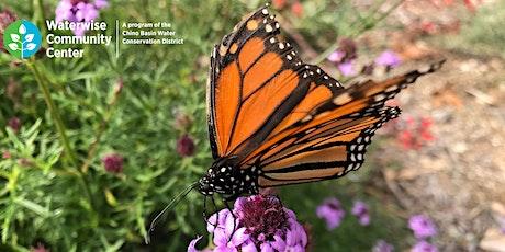 Gardening for Birds, Butterflies, Pollinators, and More - Online Workshop tickets