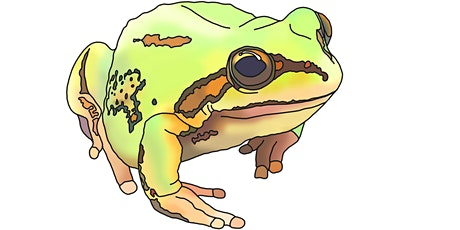 Gecko Talks June 23rd: Frogs and Frog chytrid disease tickets