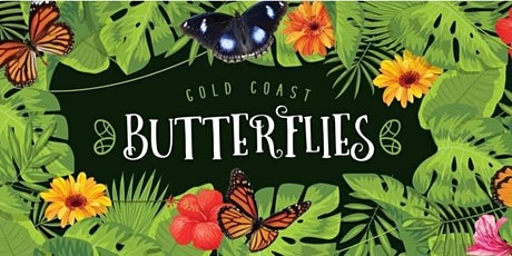 Gold Coast Butterflies at Tweed Regional Museum tickets