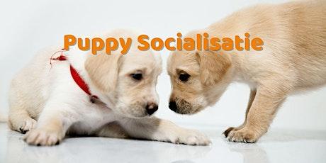 Puppy socialisatieklas tickets