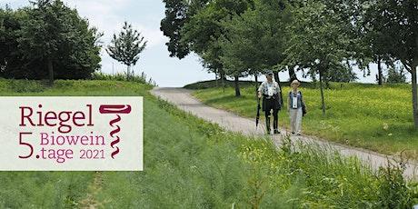 Weinwanderung entlang des Konstanzer Seerheins - 5. Bioweintage Tickets