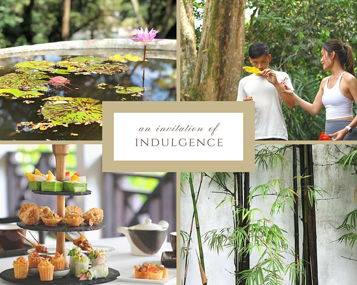 Forest Bathing & High Tea: an afternoon of private indulgence image
